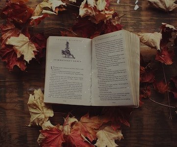 Harry Potter book lying on a table surrounded by autumn leaves, and open to Dumbledores Army chapter