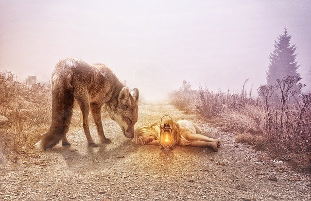Image of a small girl sleeping on a dirt path with a large dog watching over her. Girl has a lantern as if she is on a journey.